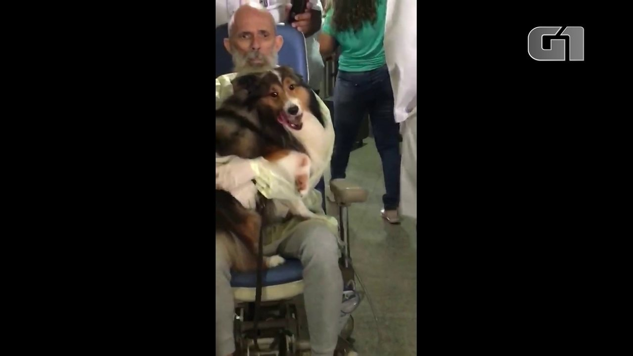 Paciente com câncer reencontra cachorro em hospital no Recife