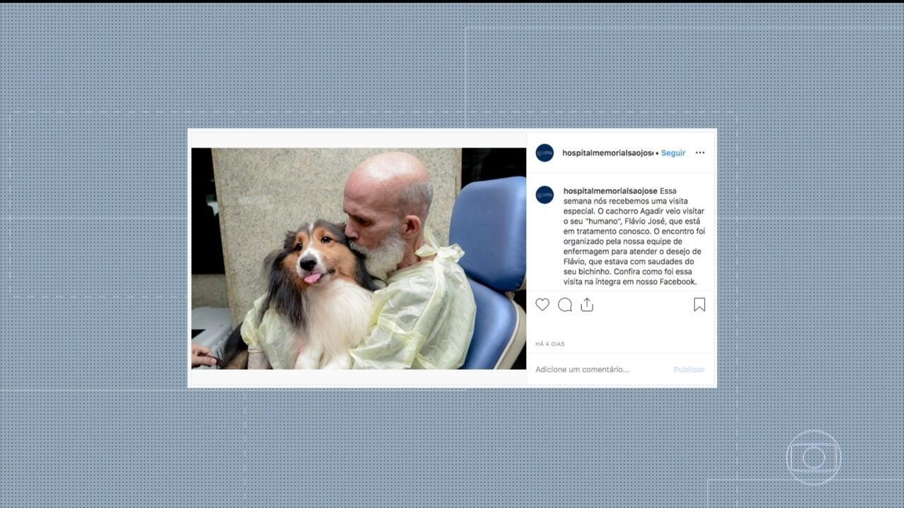 Paciente com câncer tem melhora após reencontrar cachorro, diz médico