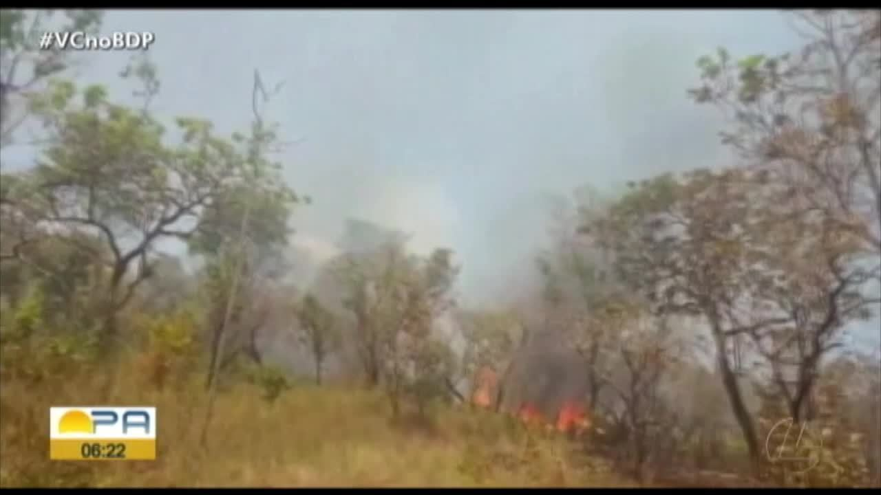 Brigadistas atuam controle de focos de incêndio em Alter do Chão