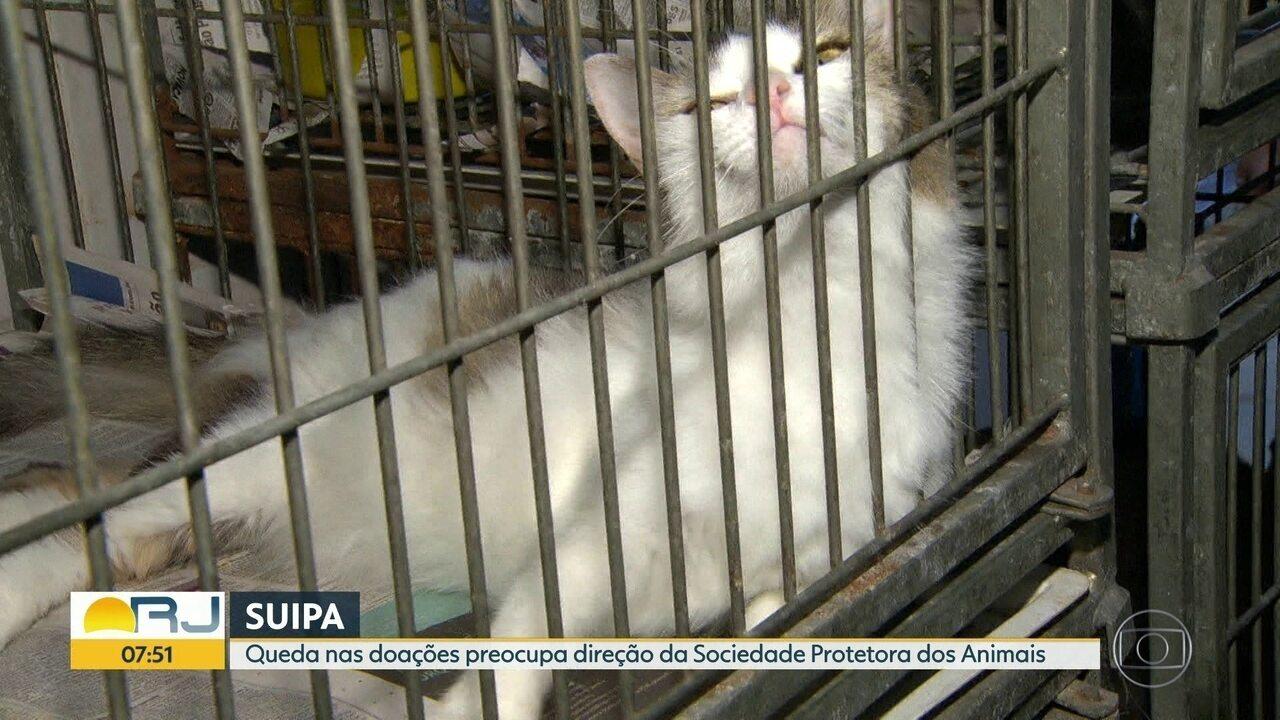 Suipa tem queda no número de doações mensais