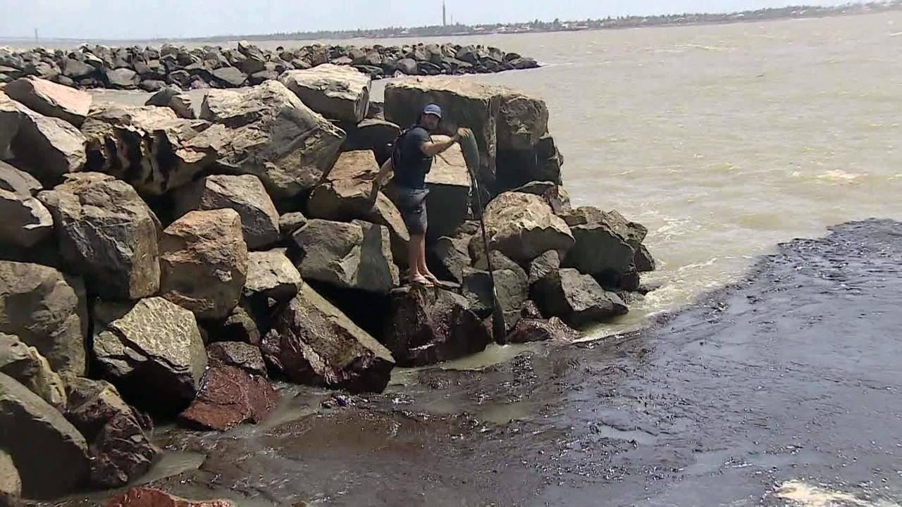 Bolsonaro determina investigação sobre manchas de óleo no Nordeste