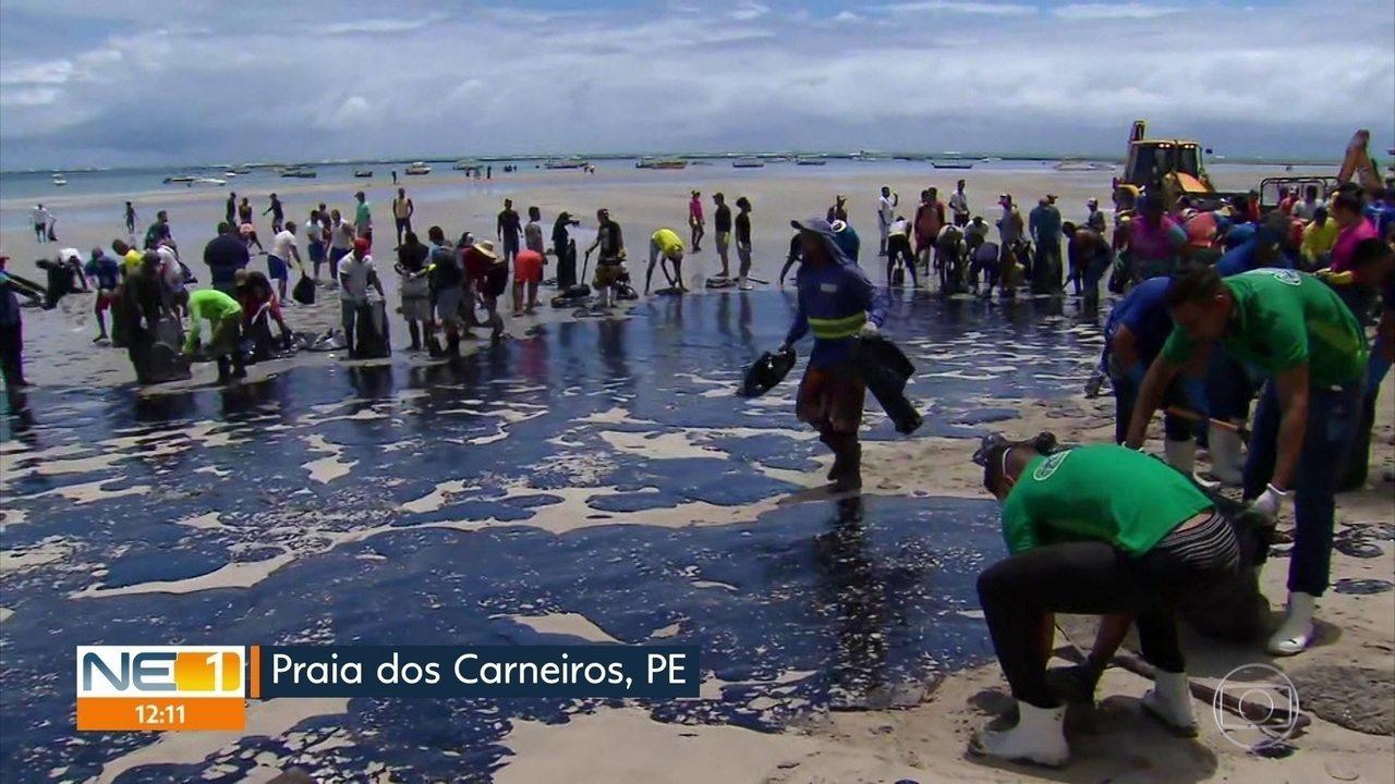 Manchas de óleo sujam Praia dos Carneiros, no litoral Sul de Pernambuco