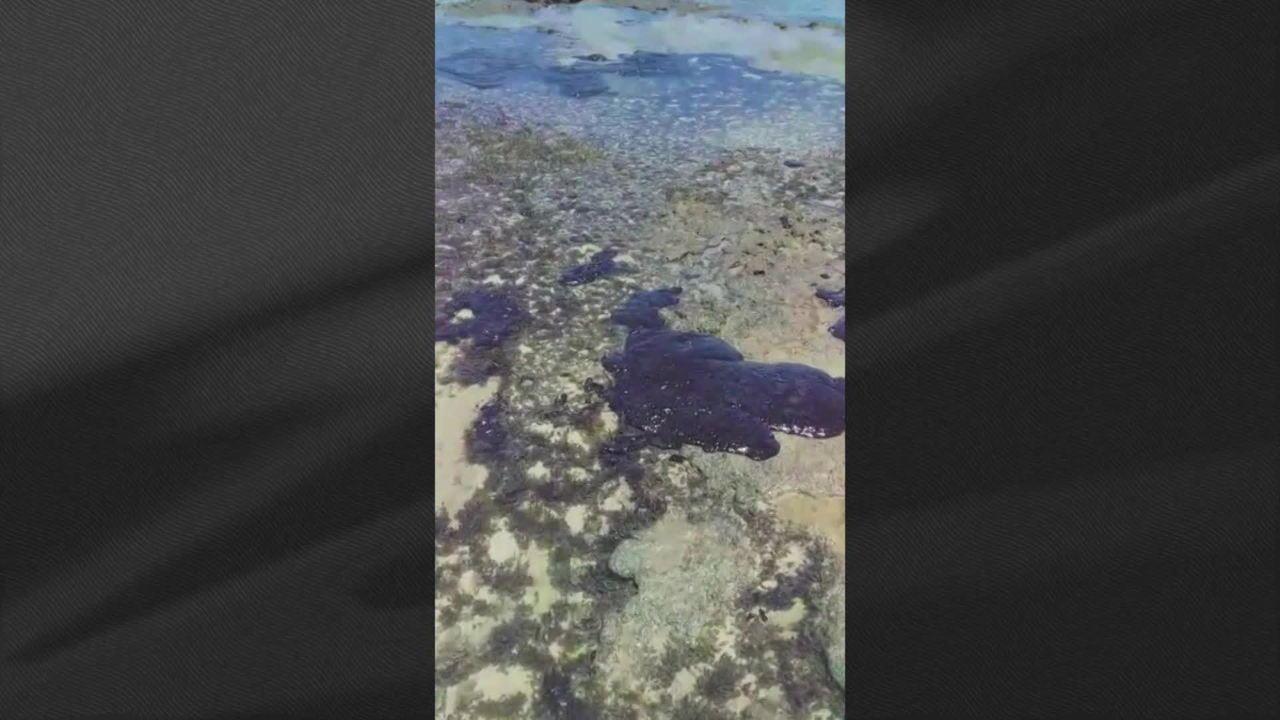Dez toneladas de óleo são retiradas de praia em Pernambuco