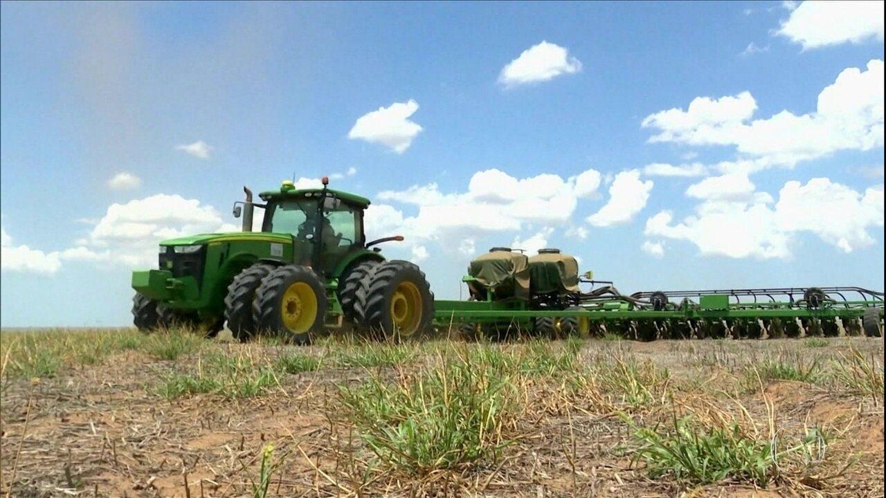 Plantio da soja na Bahia está atrasado, mas agricultores estão otimistas