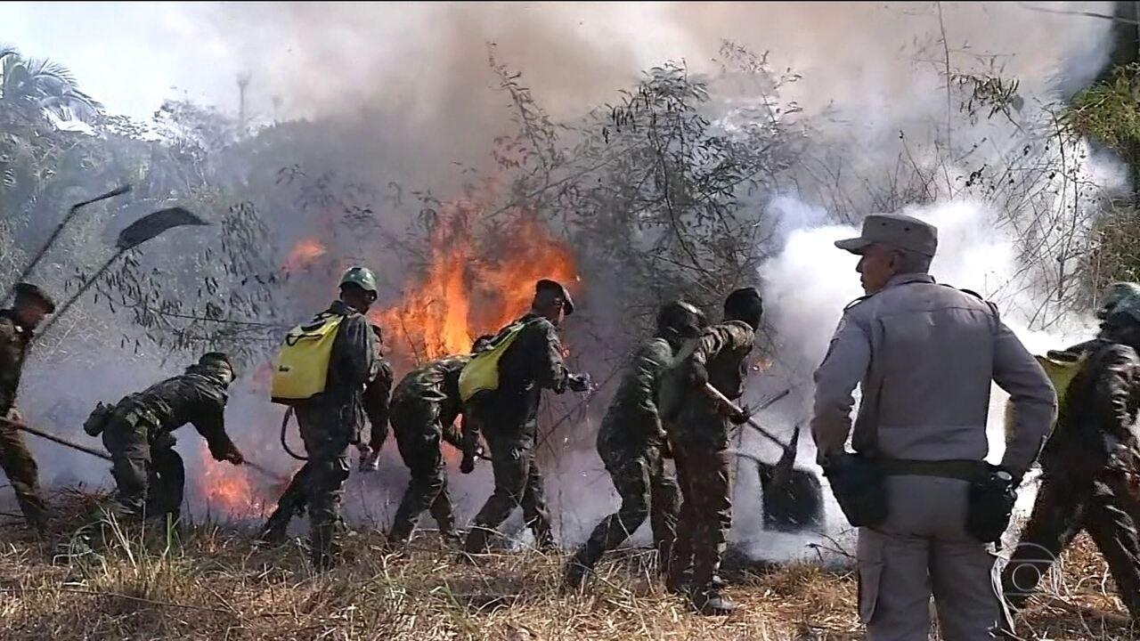 Queimadas e desmatamento na Amazônia aumentam após saída do Exército