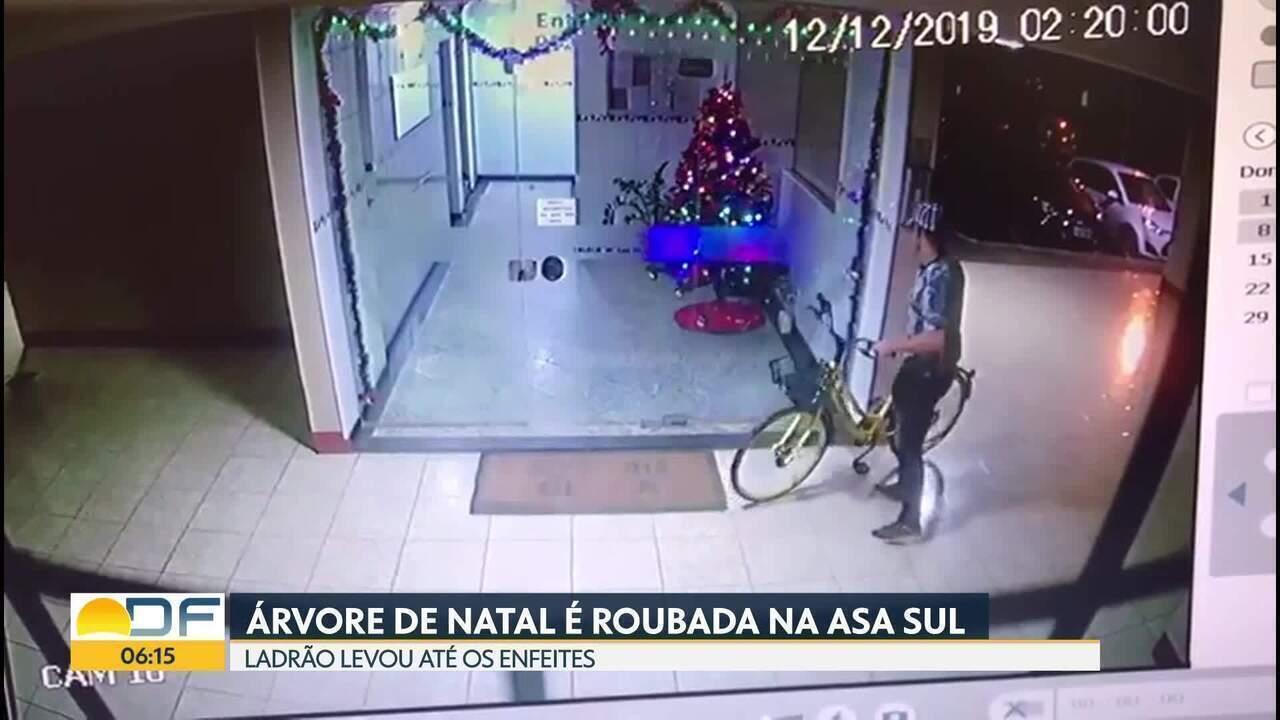 Árvore de Natal é roubada em portaria de prédio da Asa Sul
