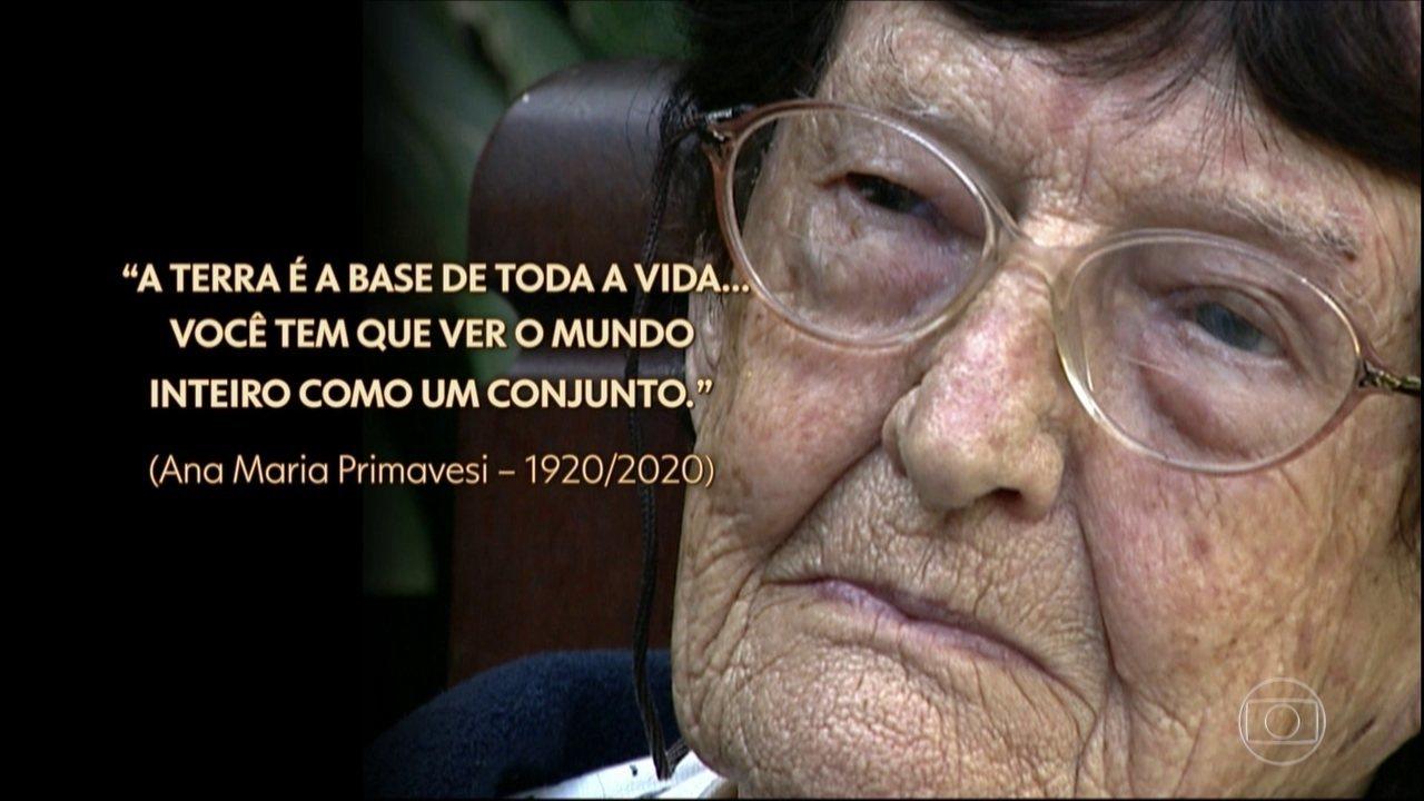 Relembre a trajetória de Ana Maria Primavesi, pioneira da agroecologia no Brasil