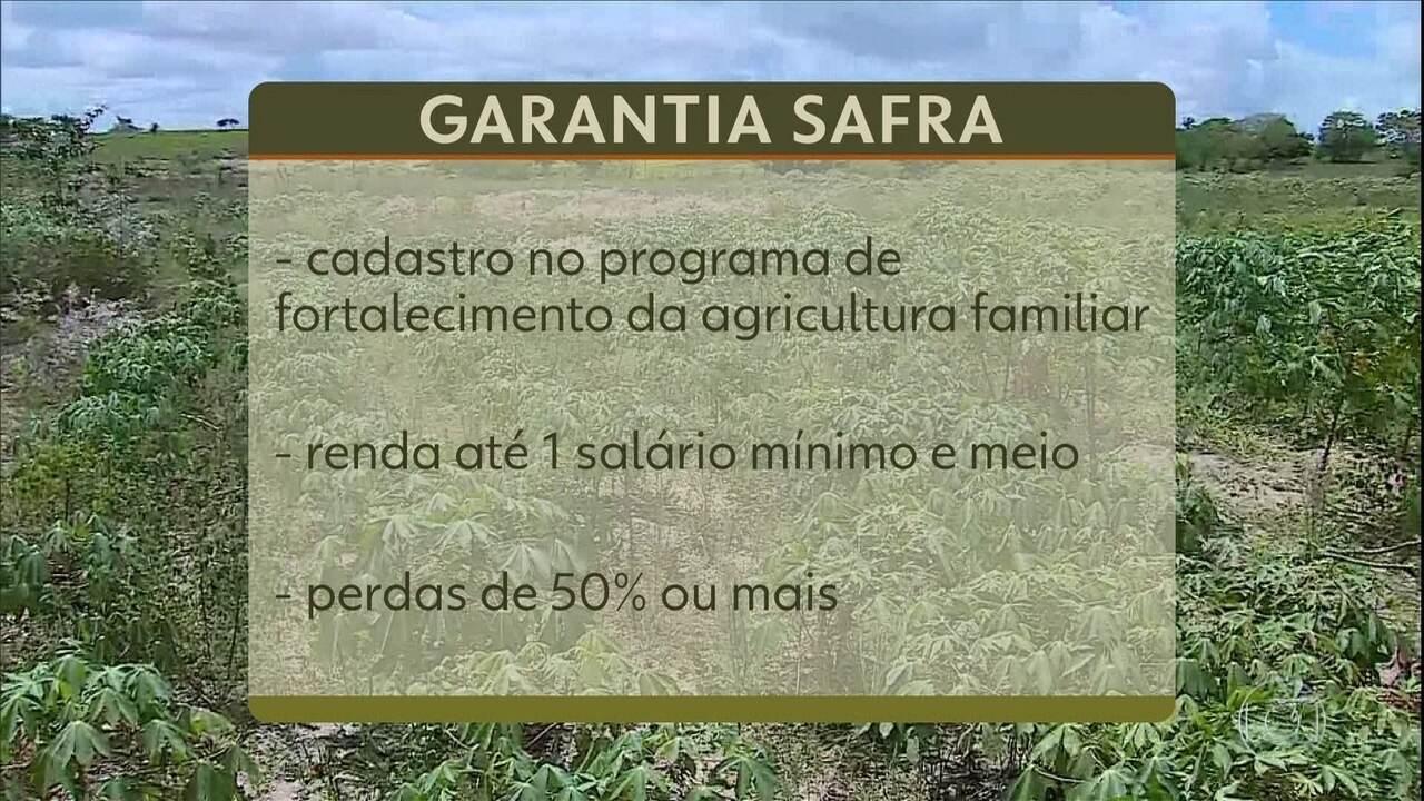 Pagamento de benefício social ajuda produtores rurais atingidos pela seca do Nordeste