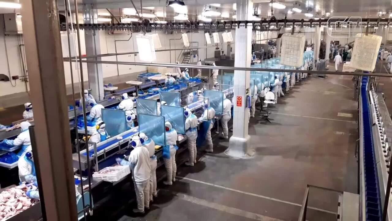 Trabalhadores do ramo alimentício no DF mudam rotina na pandemia