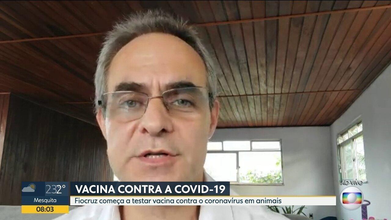 Fiocruz começa testar vacina contra Covid-19 em animais