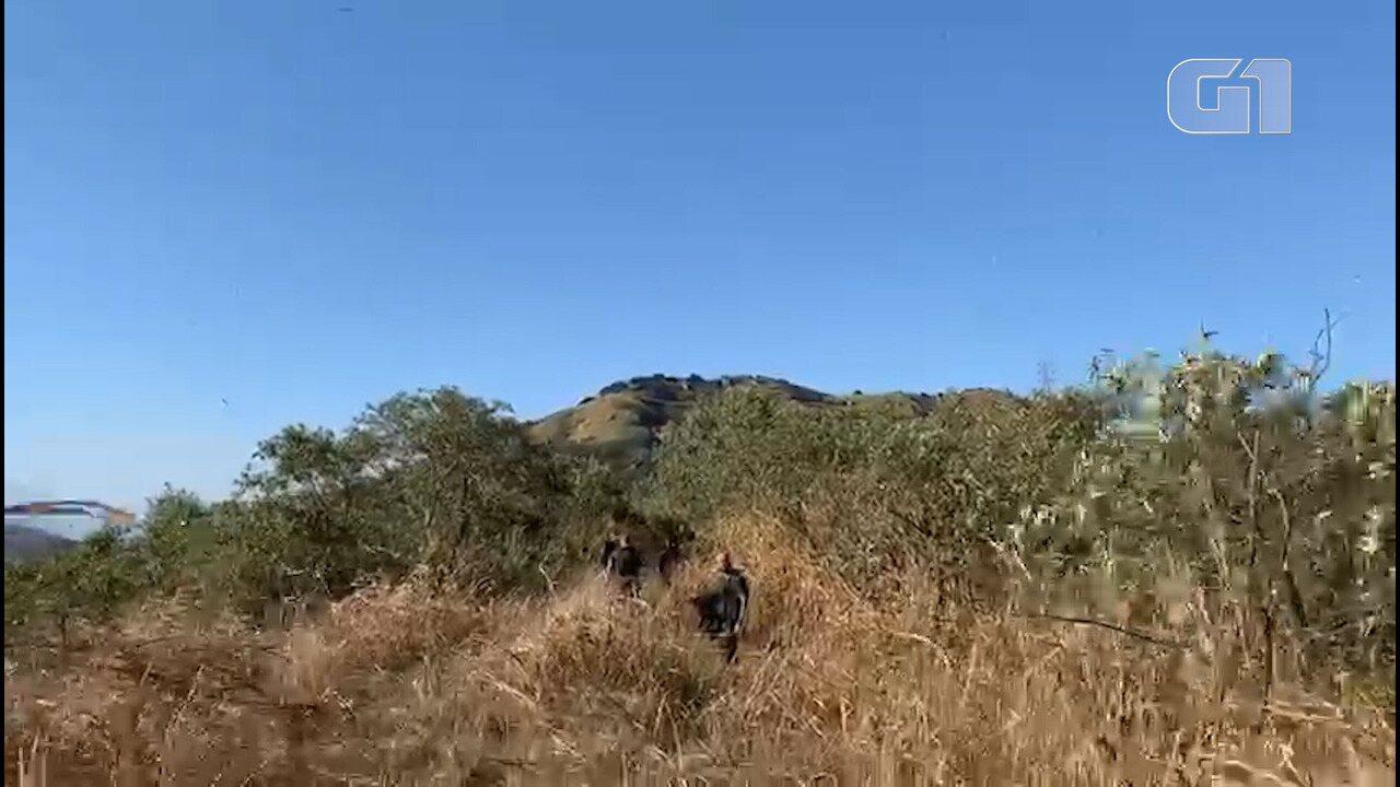 Polícia chega para perícia em mata na região da Praça Seca