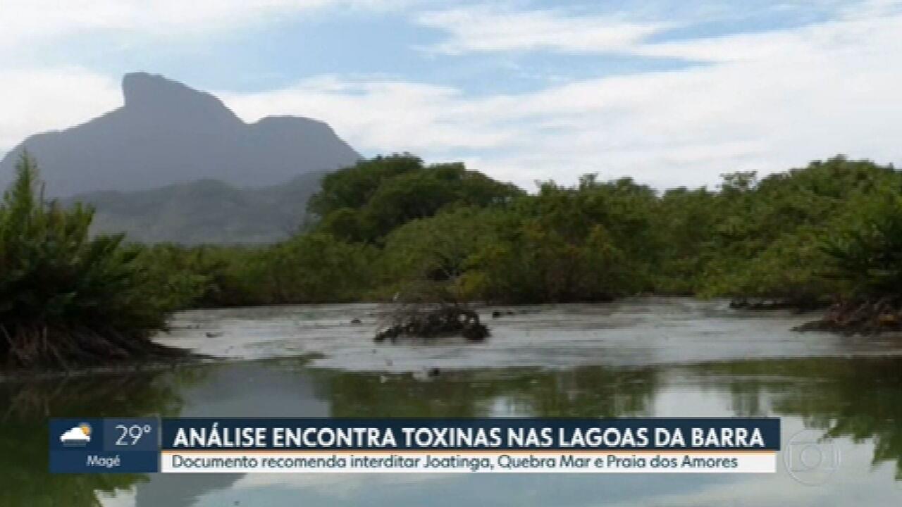 Análise encontra toxinas nas lagoas da Barra e de Jacarepaguá
