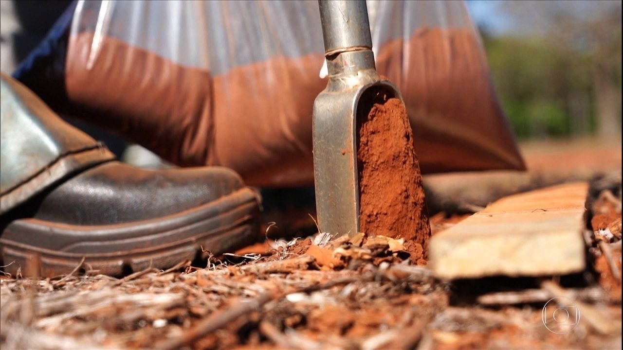 Embrapa desenvolve 'exame de sangue da terra' que promete revolucionar a análise de solo