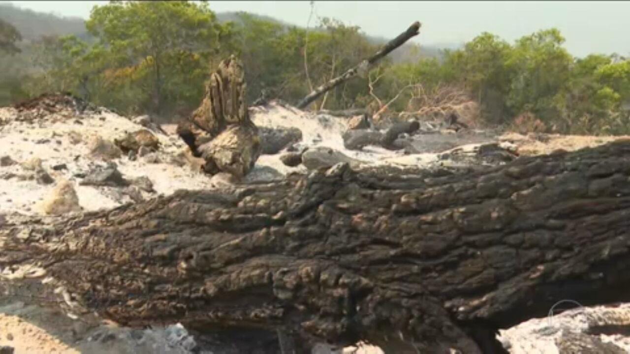Polícia de Goiás conclui que incêndios na Chapada dos Veadeiros foram criminosos